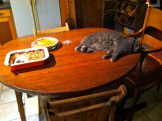 This is exactly how everyone feels at the end of the night on Thanksgiving..
